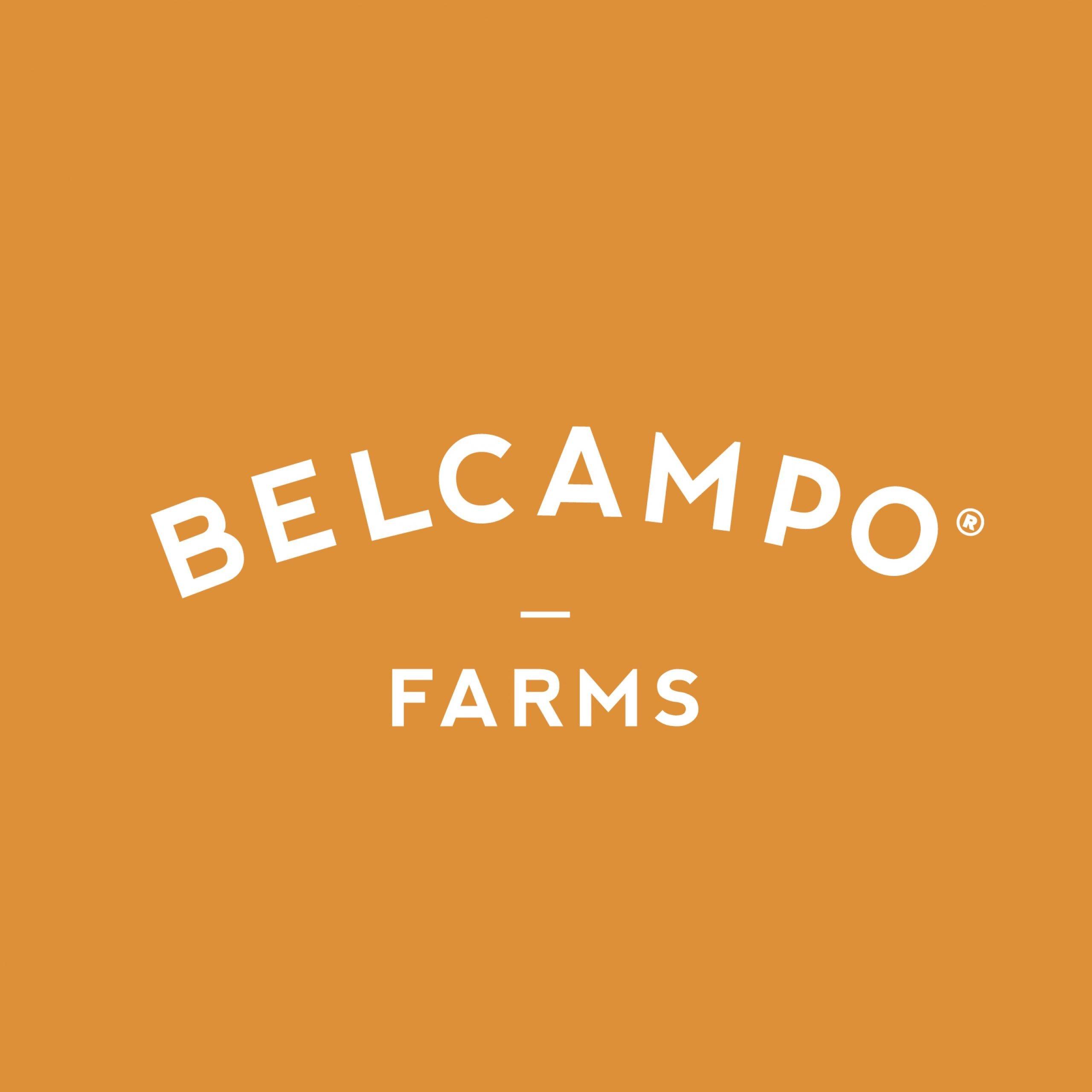 CASE-STUDY_BELCAMPO-11